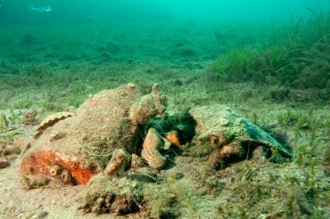 Au fil de nos plongées, nous découvrons des restes archéologiques, enfouis dans le sable dans des profondeurs très faibles ©Philippe Henry / OCEAN71 Magazine