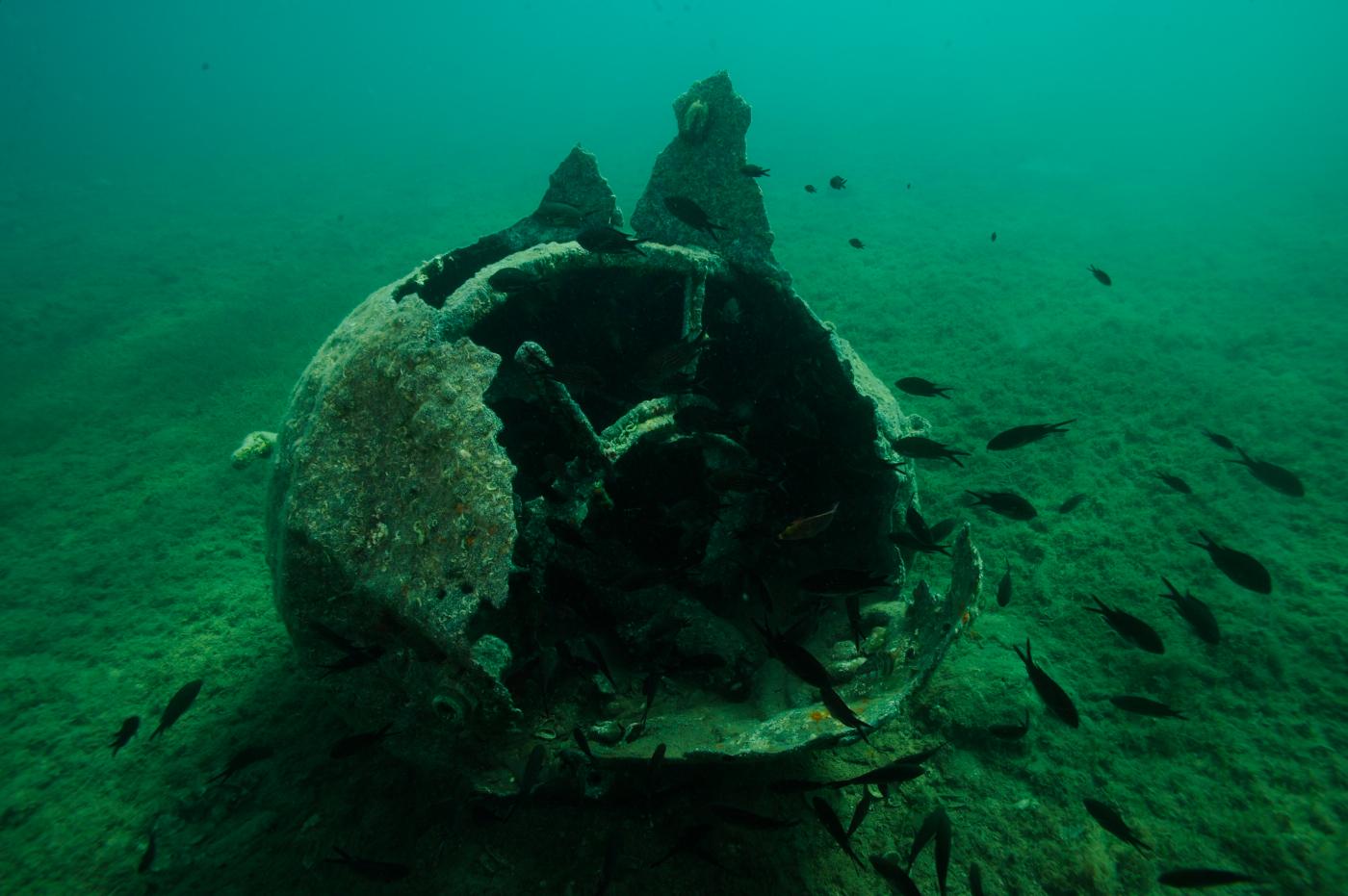 Une plongée nous permet d'étudier les restes d'une mine sous-marine éventrée © Philippe Henry / OCEAN71 Magazine