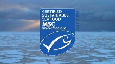 Un seul navire est certifié MSC. Des experts scientifiques se demandent si pour autant la pêche du krill est durable © Aker BioMarine