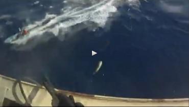 Une image d'une vidéo montrant les tirs d'un garde armé privé face à l'approche d'une embarcation légère de pirates somalien. La question reste de savoir si ces violents accrochages sont enregistrés © DR