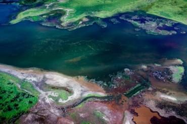 Zones humides à proximité du port d'Abbot Point. Il est probable qu'un développement industriel dans la région vienne rompre l'équilibre fragile de ces étendues sauvages ©Tom Jefferson / Greenpeace
