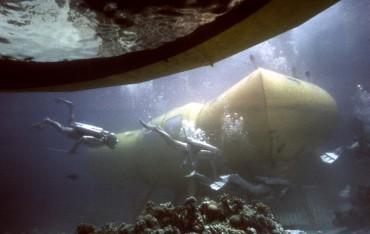 """Les plongeurs de l'équipe Cousteau évoluant du hangar à soucoupe à leur habitat la """"Denise"""" © The Cousteau Society"""