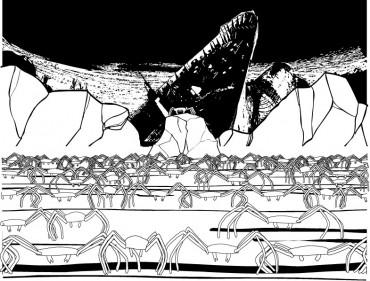 L'assemblée des Pachygrapsus Marmoratus © Arthur de Pins/Metronomic 2004
