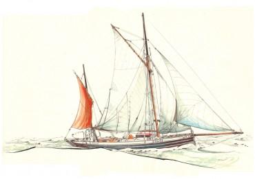 Dessin de Leenan Head, l'un des voiliers ayant participé au fret à la voile © Dessin de Antoine Bugeon