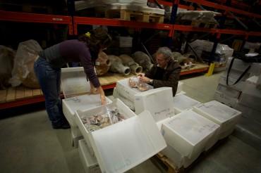 Les équipes du DRASSM s'emploient à enregistrer chacune des pièces qui arrivent au dépôt d'Aix Les Milles © Francis Le Guen / OCEAN71 Magazine