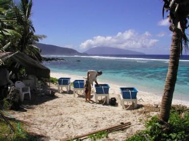 Quelques bassins d'expérimentation sur l'une des plages d'Ofu © Chuck Birkeland