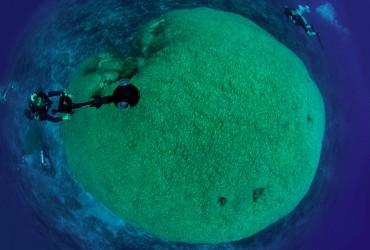 Fale Bommie vu du dessus © Catlin Seaview Survey