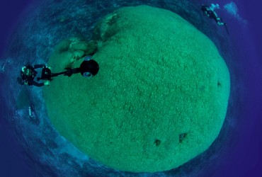 Fale Bommie from the top © Catlin Seaview Survey