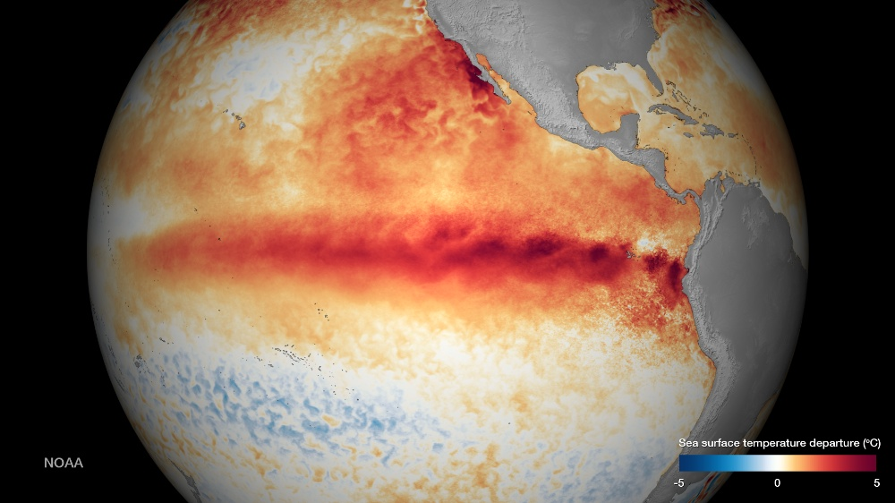 En 2015, l'El Niño du centre Pacifique est si puissant qu'il atteint les côte du Mexique © NOAA