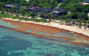 An aerial picture of this Guadeloupe beach shows the extent of the damage © Franck Mazéas
