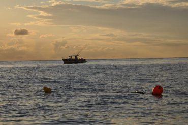 Une des smart drumlines du programme Cap Requins est appâtée pour la nuit, dans les eaux de la Réserve Marine Nationale de la Réunion © Andy Guinand / OCEAN71 Magazine