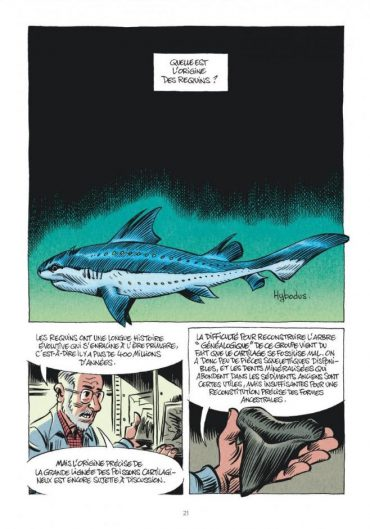 "Bernard Seret in the comic book ""Les Requins"" © B. Séret & J. Solé - Le Lombard (Dargaud-Lombard S.A.) 2016"